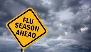 Flu Season 3
