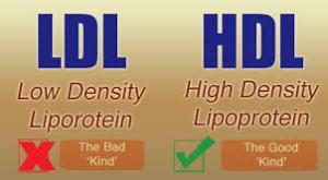 Cholesterol 3